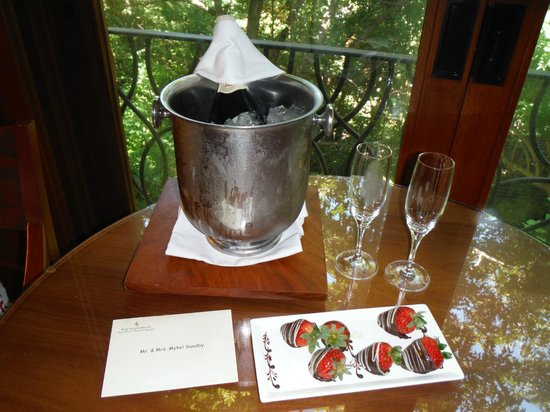 Four Seasons Resort Costa Rica at Peninsula Papagayo: how we were greated for our honeymoon!!