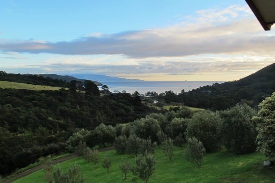 Earthsong Lodge: View of Olive Orchard and Ocean from Bedroom
