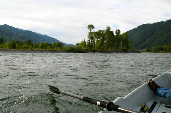 Jackson Hole Anglers : Floating the Snake River