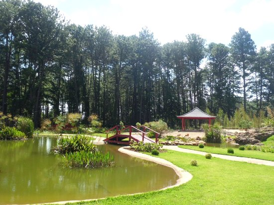 Jardim Botânico de Brasília: Jardim Botânico