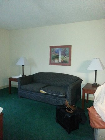 Days Inn & Suites Kansas City South: Other half of our suite was sparse and worn, also torn cushions