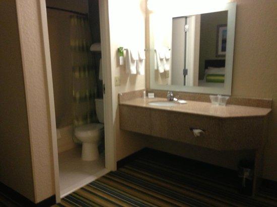 SpringHill Suites Houston Medical Center/NRG Park : Bathroom