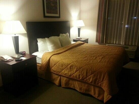 Comfort Inn & Suites Creswell : comfortable, quiet room
