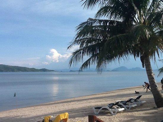 Centra by Centara Coconut Beach Resort Samui: beach