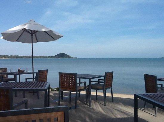 Centra by Centara Coconut Beach Resort Samui: restaurant and bar