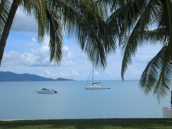 Samui Palm Beach Resort & Hotel: Views from the pool