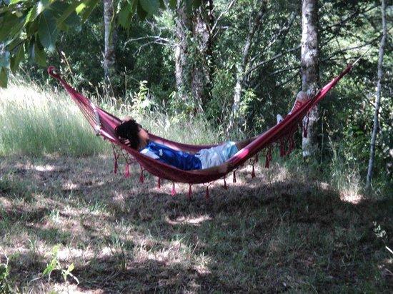 EcoReserva Quelhue Lodge y Cabanas: relaxxxxxxxxx