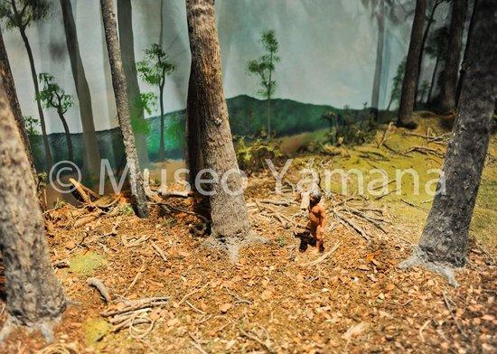 Museo Yámana: Maquetas
