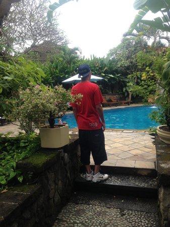 Sri Phala Resort & Villa: pool side.