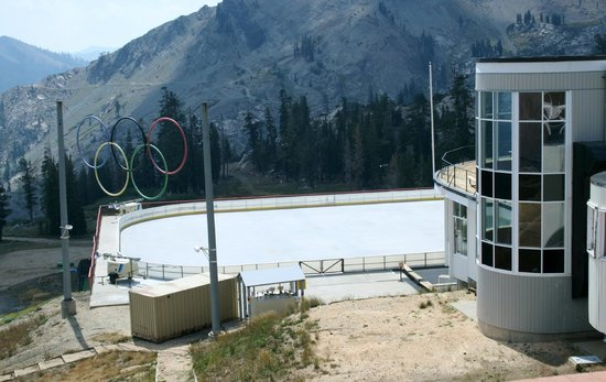 Poolside Cafe & BBQ: Olympic Rings