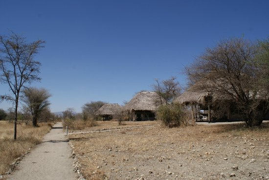 Whistling Thorn Tented Camp: On to my tent