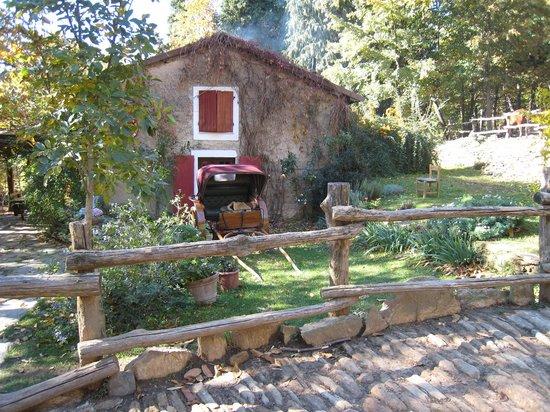 Centro Trekking a Cavallo Monte Brugiana