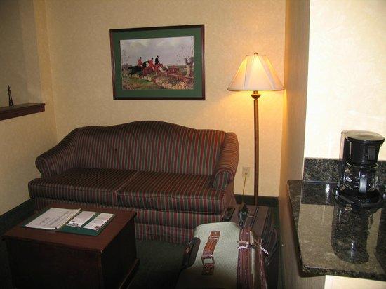 Comfort Suites Appleton Airport: Sofa