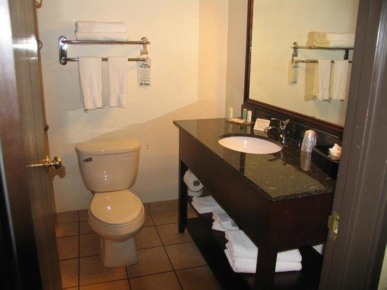 Comfort Suites Appleton Airport: Badezimmer mit vielen Handtüchern