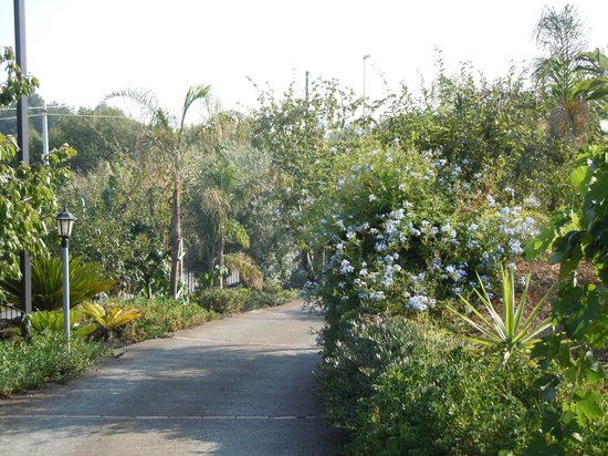 B&B Dimora dell'Etna : Il giardino