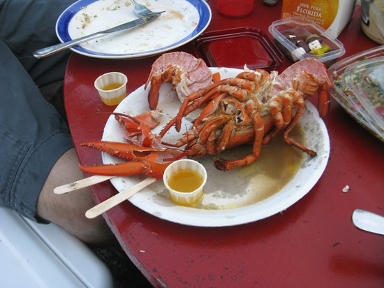 The Place: Lobster