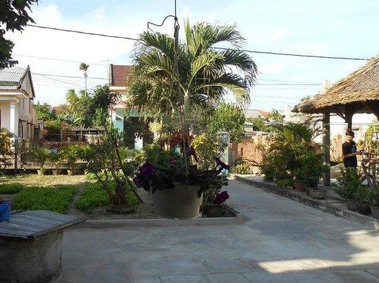 Petunia Garden Homestay : Petunia Ground