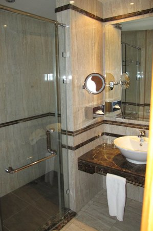 Hilton Alexandria Green Plaza: Small but efficient and the shower is really good!