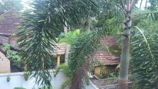 Tissa's Inn: Backyard