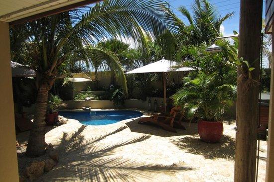 Bamboo Bali Bonaire - Boutique Resort: Het relaxhoekje van het resort, met 2 jacuzzi's, relaxpool en leeshoekje