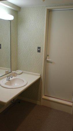 Hotel Crown Palaice Aomori: Entrance into bathroom plus sink