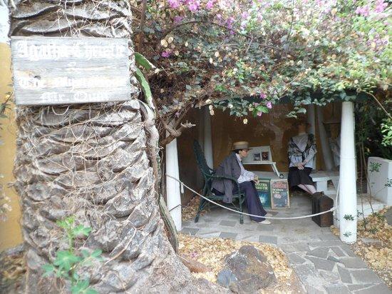 Agatha christie picture of jardin de orquideas de sitio for Jardines de orquideas