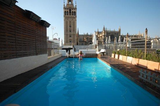 EME Catedral Hotel : Бассейн и вид