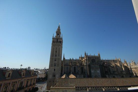 EME Catedral Hotel : Вид на Собор