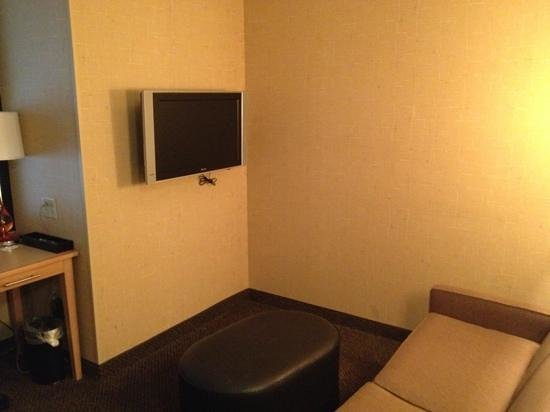Holiday Inn Boise Airport: TV and a seating area in the room.