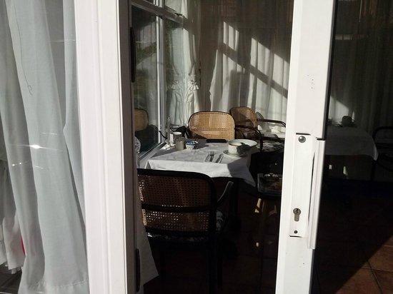 Albion Guest House : Wintergarden