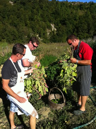 La Tavola Marche Agriturismo & Cooking School: Gathering vegetables for cooking class