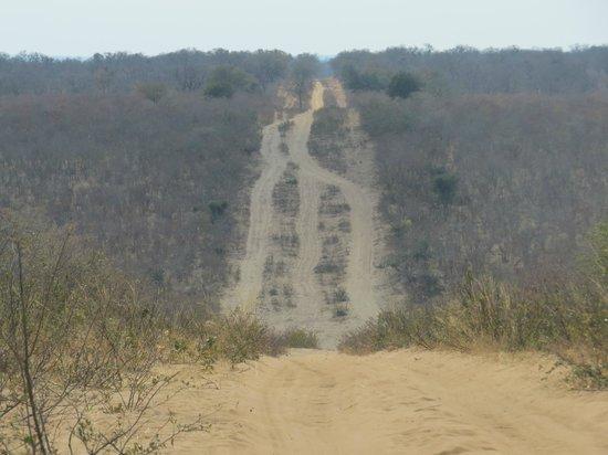 Camp Savuti: Sand road to Kasane