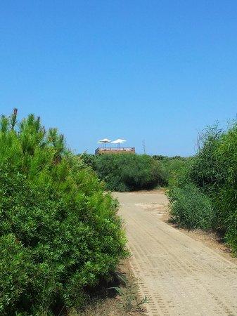 Golf Hotel Is Arenas : Verso la spiaggia...