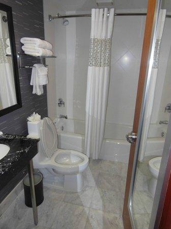 Hampton Inn Manhattan - Madison Square Garden Area : Hotel Bathroom