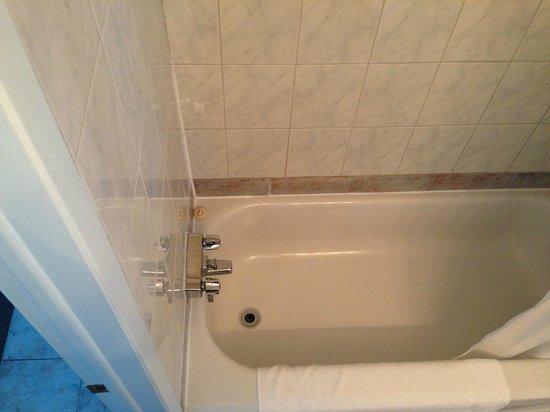 Hotel Le Pionnier : bain/douche