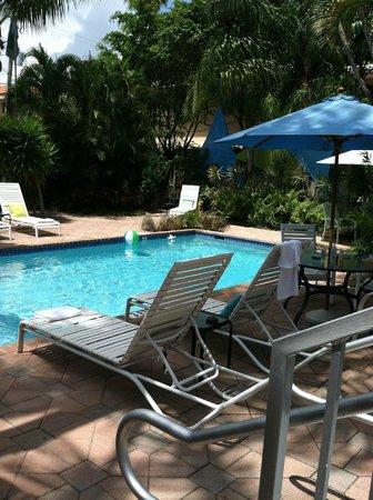 Las Olas Guesthouse @15th Avenue: Slice of tropical heaven
