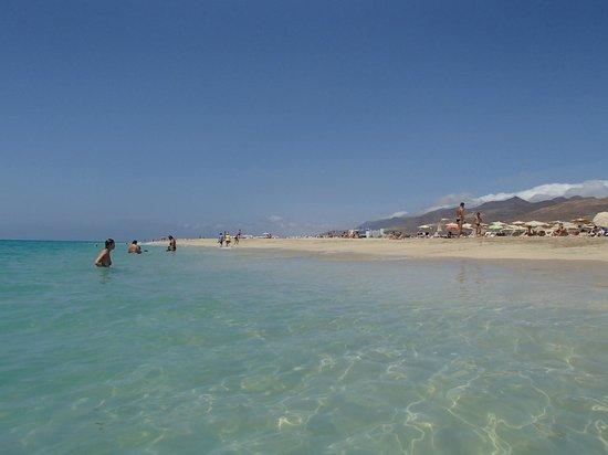 Stranden i Morra Jable - Picture of Club Drago Park Hotel, Costa Calma - TripAdvisor
