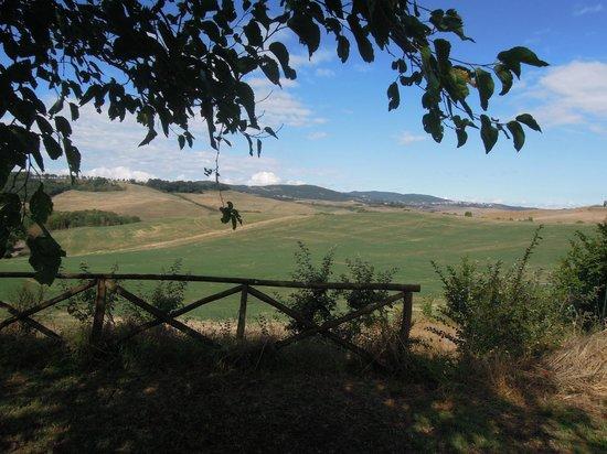 La Ripolina: Panorama