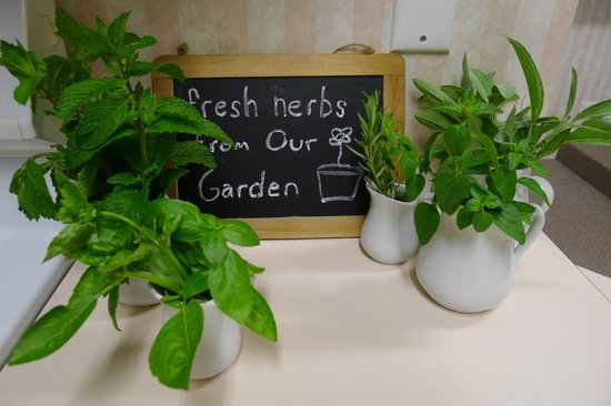 Parkside Lodge: Fresh herbs in the kitchen