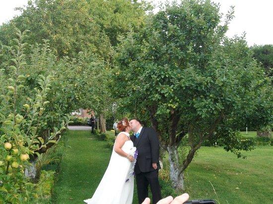 Chateau Hotel de Noyelles, Baie de Somme : le 07 septembre 2013 mariage : dans le jardin d 'hiver