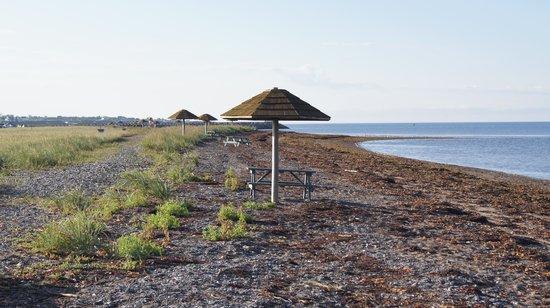 Les Chalets du Bioparc : Bord de l'eau