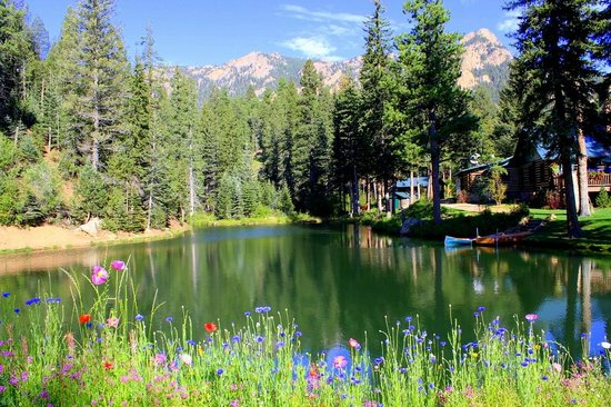 The Broadmoor Ranch at Emerald Valley: the awesome view