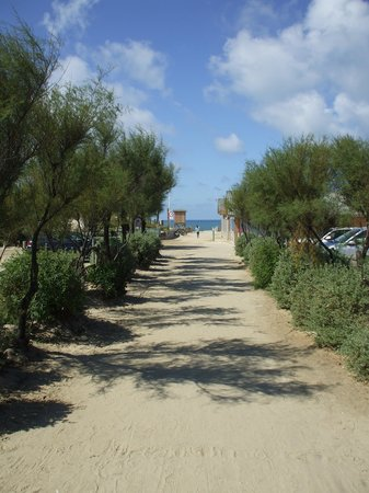 Camping de la Cote d'Argent : Path to the beach