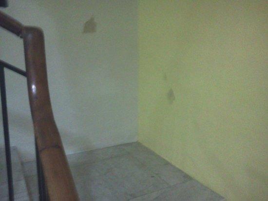 Hibernia Residence & Hostel: suciedad