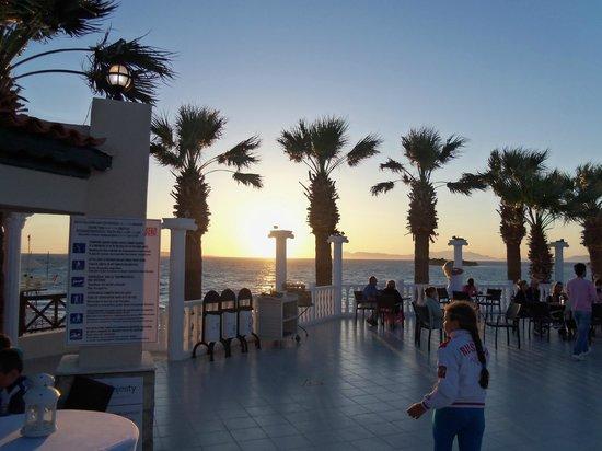 Club Tarhan Beach Hotel: X