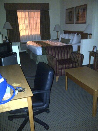 Best Western Plus Newport News Inn & Suites: Room, front to back 2