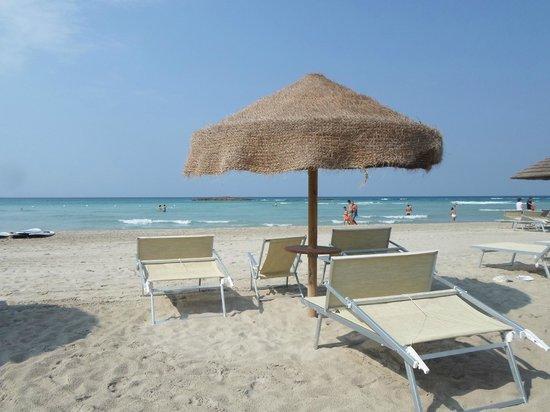 Araucaria: spiagge fantastiche