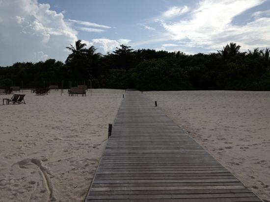 Coco Palm Dhuni Kolhu : le Planton