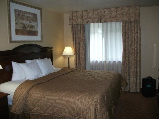 Comfort Inn Newport: Clean bedroom