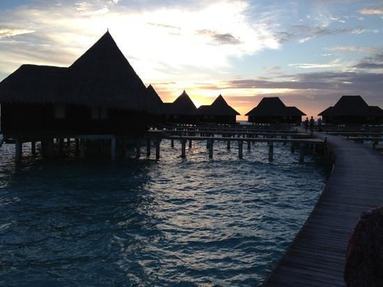 Coco Palm Dhuni Kolhu: lagon villas